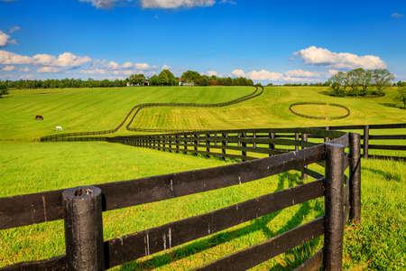 Paard boerderij met zwarte hekken