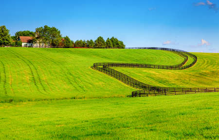 bluegrass: Scenic image of a horse farm with black wooden fences