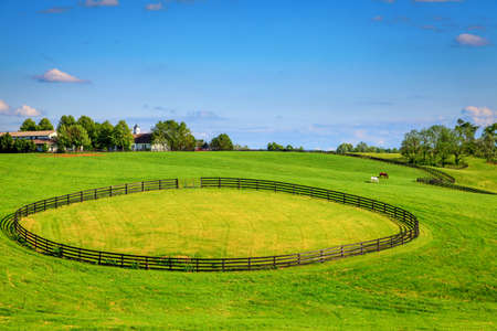 bluegrass: Hhorse farm with black fences