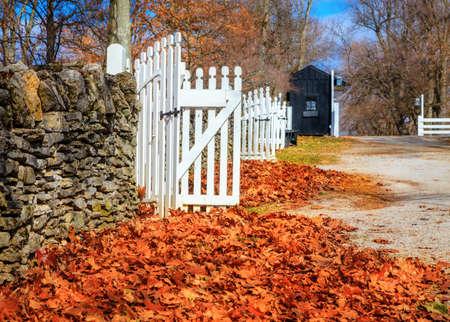 late fall: Late fall in Kentucky Stock Photo