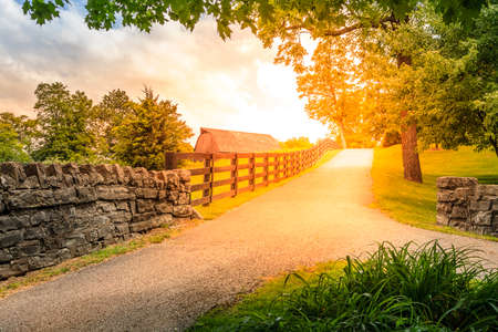 Scenic alley in Kentucky countryside in summer