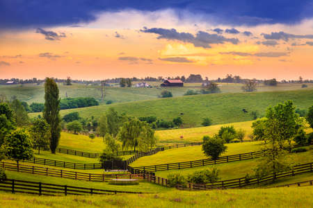 bluegrass: Evening scene in Kentucky