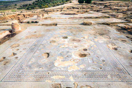 remnants: Remnants of ancient floor mosaic at Tzippori National Park in Israel