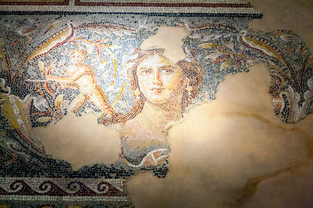 mona lisa: Fragments of mosaic floor in Tzippori National Park in Israel