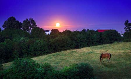 Moon rising over farmland in Bluegrass region of Kentucky photo