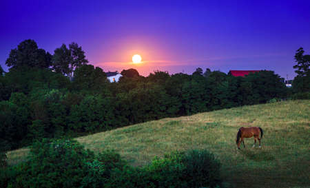 bluegrass: Moon rising over farmland in Bluegrass region of Kentucky Stock Photo