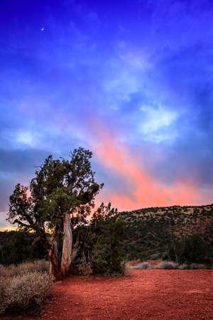 arizona landscape: Sundown afterglow in Arizona high desert. Sedona Arizona
