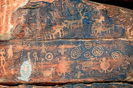 animales del desierto: Petroglifos ind�genas