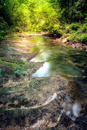 Small creek in a forest near Dog Slaughter Falls near Corbin, Kentucky