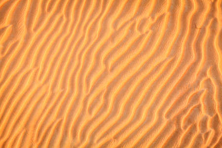Ripples in the sand in the dunes of Dubai Desert Conservation Reseve, UAE Banco de Imagens