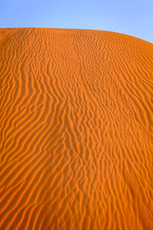 Ripples in the sand in the dunes of Dubai Desert Conservation Reseve, UAE Imagens