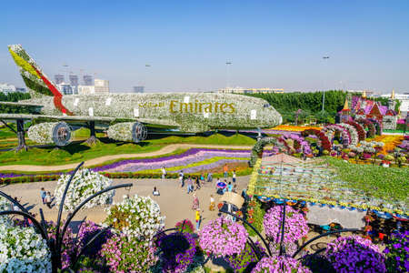 Dubai, UAE, December 12, 2016: Miracle Garden is one of the main tourist attractions in Dubai, UAE Редакционное