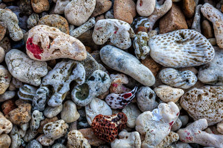 Pebbles and pieces of coral on a beach in British Virgin Islands