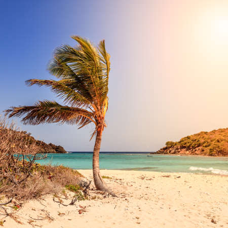 Empty idyllic beach on a small island in BVI Stock Photo