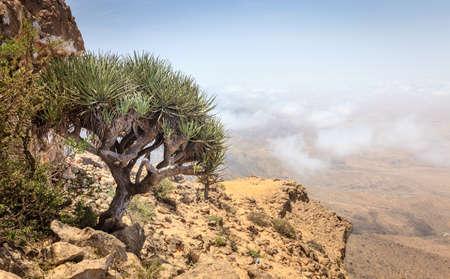 Scenic view from Jebel Samhan - an elevated plateau near Salalah, Oman