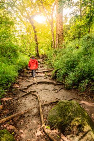 Woman on a hiking trail in Rincon de la Vieja National Park in Costa Rica
