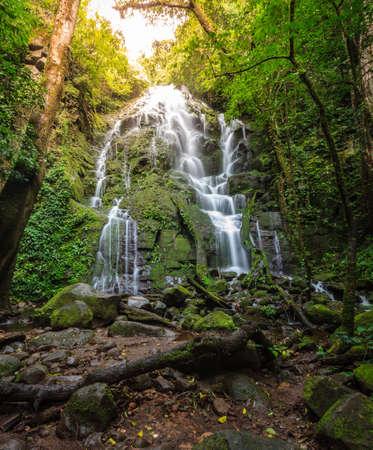 Scenic view of a waterfall in Rincon de la Vieja National Park, Costa Rica