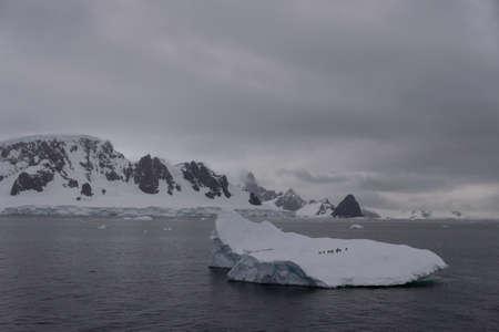Penguins on the iceberg in sea Stock Photo