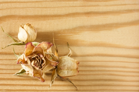 Dried rose flowers lies on a textured rough wooden table top close-up view photo