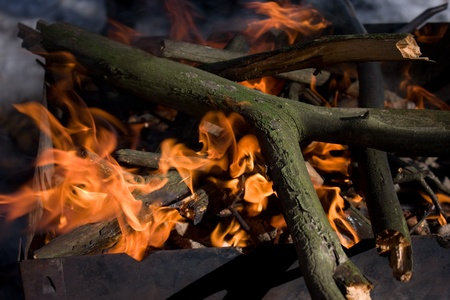 Thick dry broken tree branches burning in an iron brazier under sunlight closeup view