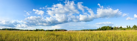 Wonderful summer panoramic view of clouds and yellow wildflowers on meadow photo