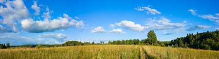 Wonderful summer panorama of clouds and meadow with country road photo