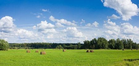 Panoramic view of field with haystacks near the forest under blue sky with white clouds under sunlight Stock Photo