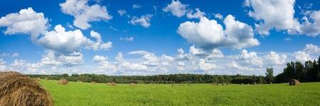 Panorama of field with haystacks near the forest under blue sky with white clouds under sunlight photo