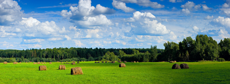 Panoramic view of field with haystacks near the forest under blue sky with white clouds with shadows  photo