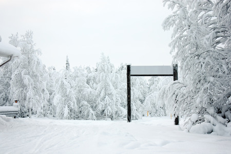Winter forest covered in show with ski run and gate photo