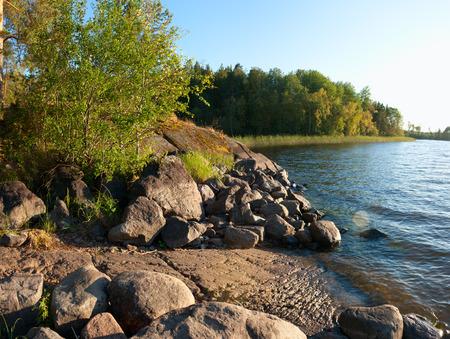 Ladoga lake lakeside in summer sunset light natural landscape photo