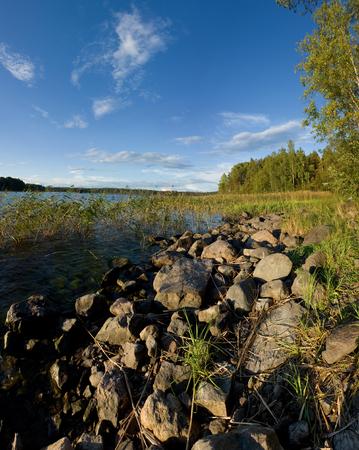 Ladoga lake lakeside in summer sunset light, natural landscape photo