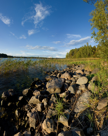 Ladoga lake lakeside in summer sunset light, natural landscape photo