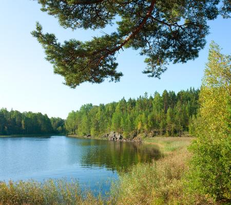 ladoga: Ladoga lake under summer sunlight