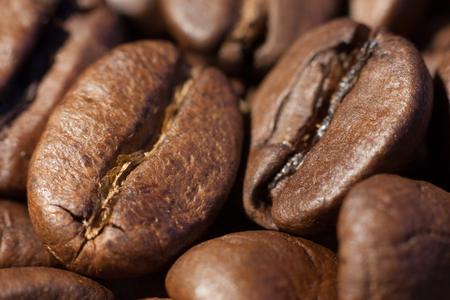 Two brown roasted coffee beans close-up macro view natural food background, selective focue, shallow depth of field.