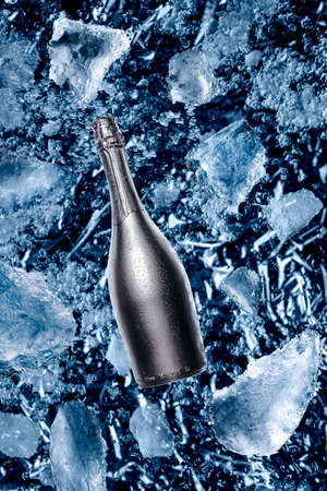 Champagne bottle with snow ice