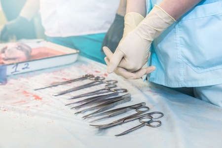 student doctor is preparing for surgery. medical instruments close-up