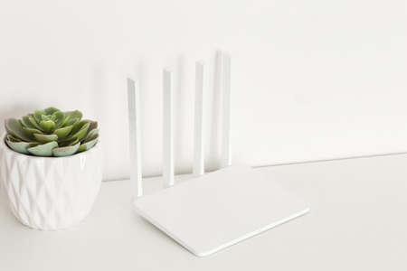 White wifi router on white  with succulent plants. minimalism. Фото со стока
