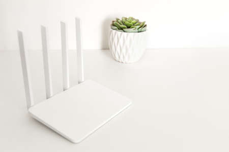 White wifi router on white  with succulent plants.