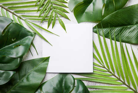 tropical palm leaves with white card, text box. Flat lay, nature concept, mockup.
