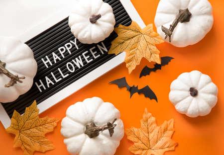 Happy Hallooween backgroung. Flat lay composition on orange paper. White pumpkins and bats. Reklamní fotografie