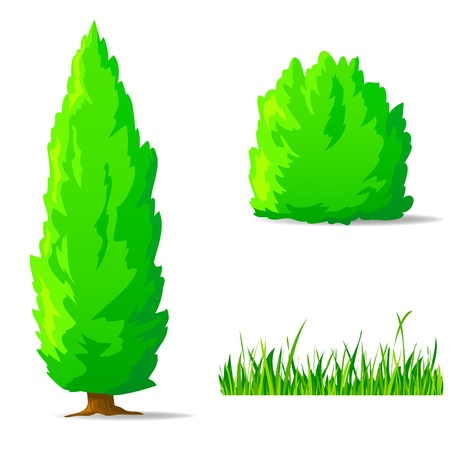 bush: illustration. Set of cartoon green plants. Vertical tree, bush, grass.
