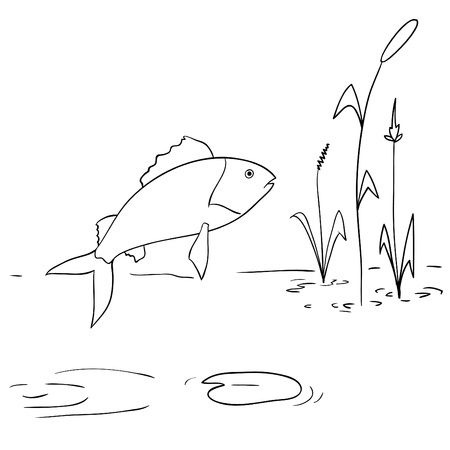 illustration. Cartoon river fish jumping out from water Illustration
