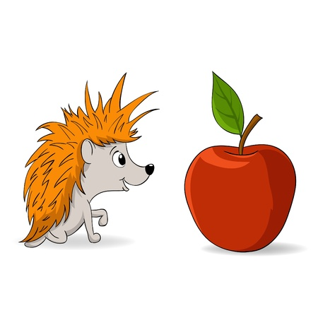 one animal: Vector illustration. Cartoon little hedgehog and red apple