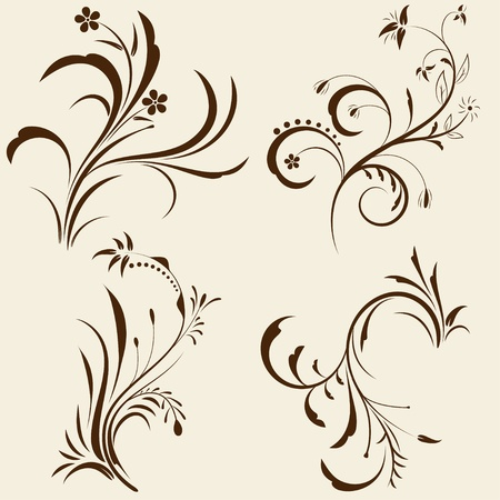 Set of decorative floral ornament with design elements. Vector illustration. Stock Vector - 11307588