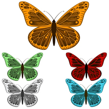 Butterfly collection isolated on white background illustration Illustration