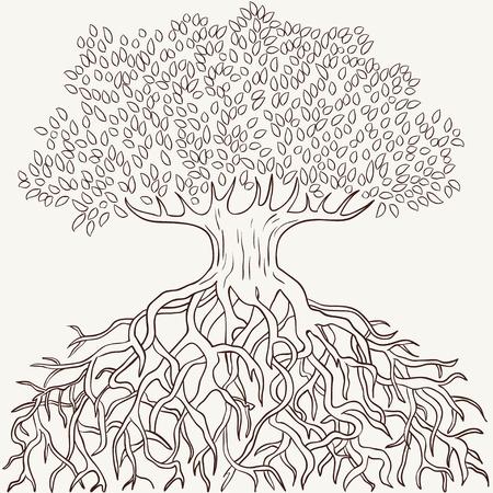 boom wortels: Abstracte boom met takken en wortels silhouet geïsoleerd Stock Illustratie
