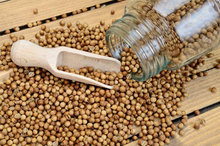 coriander seed on wooden table Stock Photo