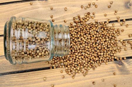 culantro: coriandro en mesa de madera