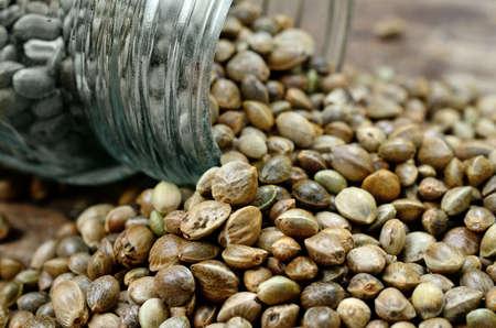 marihuana: hemp seed on wooden table